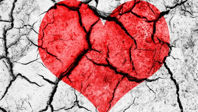 broken-heart-jpg-653x0_q80_crop-smart